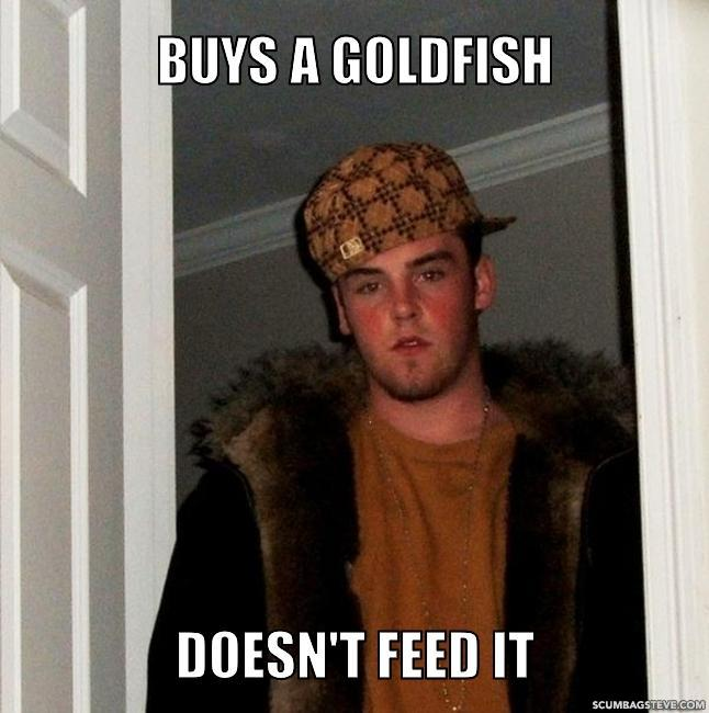 Buys a goldfish doesn t feed it c94b19