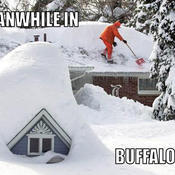 Meanwhile in buffalo ny 47255d
