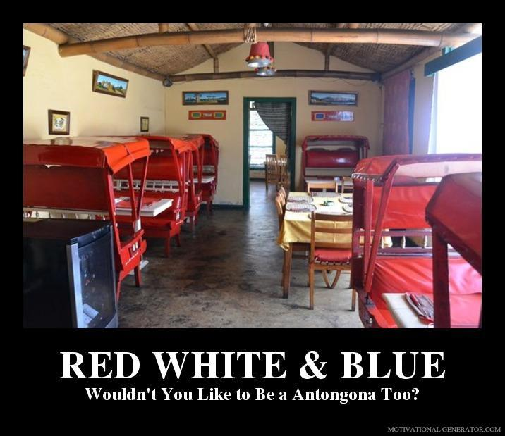 Red white blue wouldn t you like to be a antongona too ddeecd