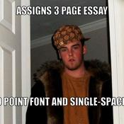 Assigns 3 page essay 10 point font and single spaced d494f1