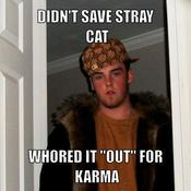 Didn t save stray cat whored it out for karma bc93ef