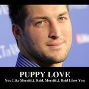 Puppy love you like merritt j reid merritt j reid likes you aa4672