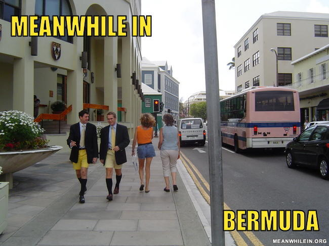 Meanwhile in bermuda d45bac