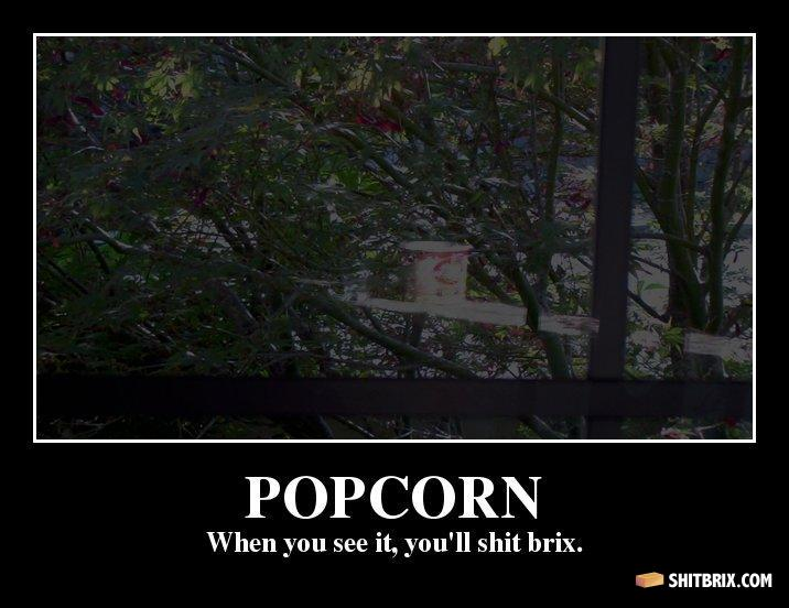Popcorn popcorn when you see it you ll shit brix 7db3d1