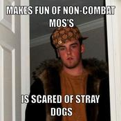 Makes fun of non combat mos s is scared of stray dogs 603dc3