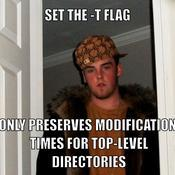 Set the t flag only preserves modification times for top level directories 7dde9c