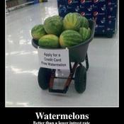 Watermelons better than a lower intrest rate 3805da