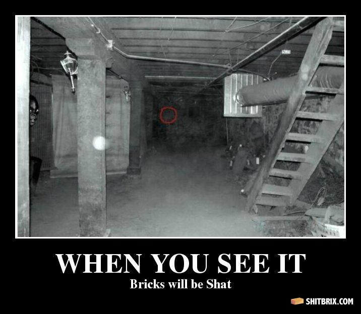 Dah Fuq When You See It Bricks Will Be Shat