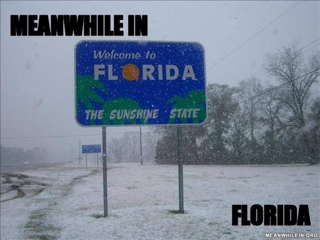 Meanwhile in florida 1fcaab