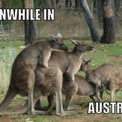 Meanwhile in australia 593ade
