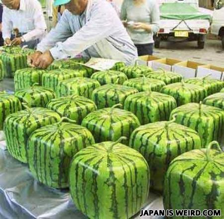 Watermellons