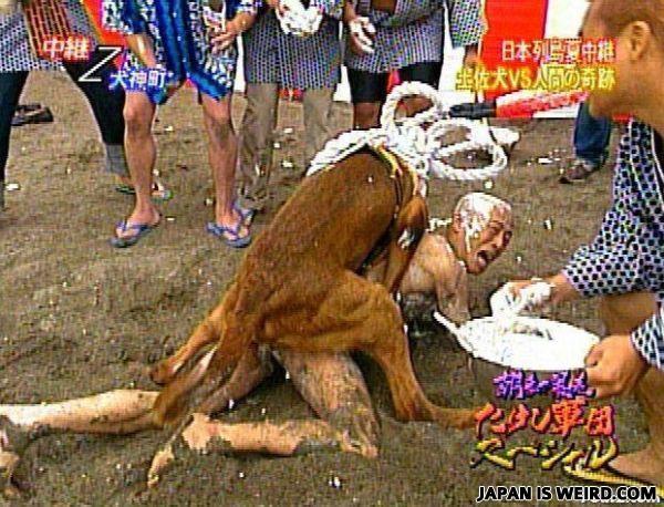 japan weird porn