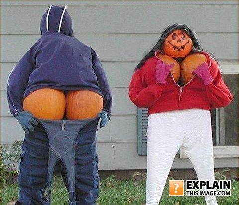Funny pumkin display 11375