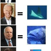Obama mccain funny 1223608182 28874