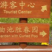 Amazing chinglish