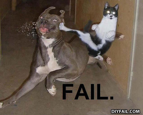 gallery of funny fail pictures diy fail